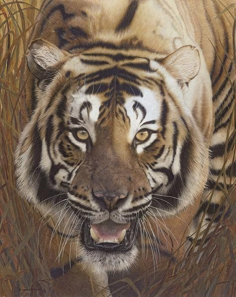 wildlife artist Frances Whitman